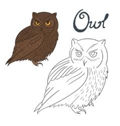 Educational game coloring book owl bird vector