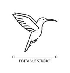 Hummingbird pixel perfect linear icon vector