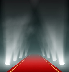 Lanterns illuminate the red carpet vector