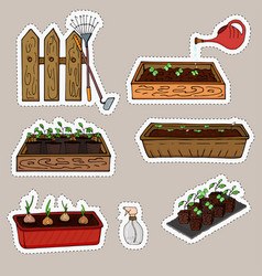 stickers seedlings plants in boxes and green vector image