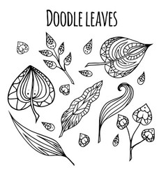 set of black and white doodle leaves with vector image vector image