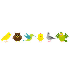 Bird set line colibri canary parrot dove pigeon vector