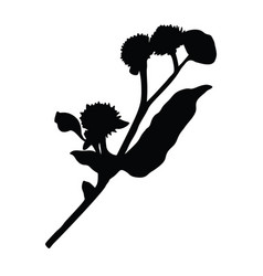 Burdock silhouette isolated on white background vector