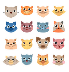 cats heads cute funny domestic animals colored vector image