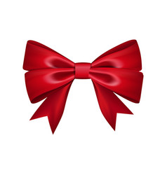 gift bow tie vector image