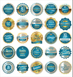 Premium quality retro vintage gold and blue vector