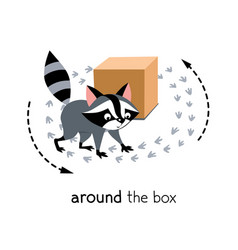 Preposition movement raccoon walks around vector