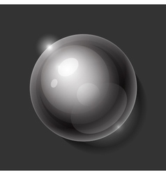 Realistic shiny transparent water drop sphere on vector image