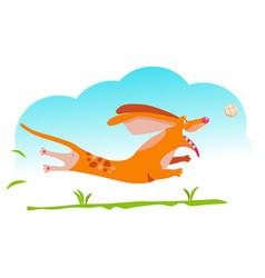 Red dog dachshund vector
