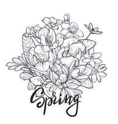 spring text hand lettering with hand drawn flower vector image