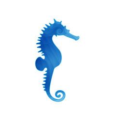 blue seahorse vector image vector image