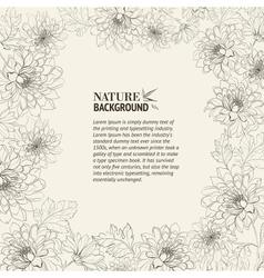 Frame of chrysanthemum vector image