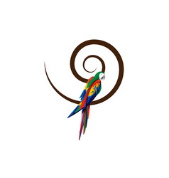 parrot logo idea design scarlet macaw bird sign vector image