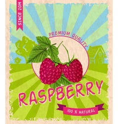 Raspberry retro poster vector image