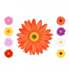 colourful gerbers set vector image