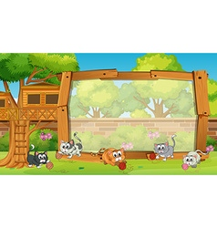 Frame design with cats in garden vector image