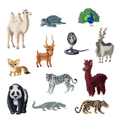 cartoon colorful asian animals collection vector image
