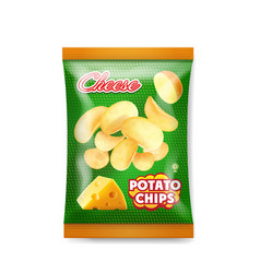 cheese chips bag design realistic vector image