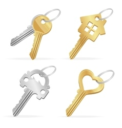 Different Keys Set vector image