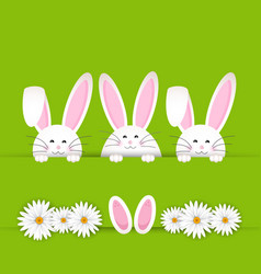 Easter bunny background vector