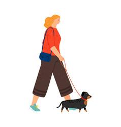 female character walking dachshund vector image