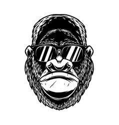 Head angry gorilla with sunglasses in vintage vector