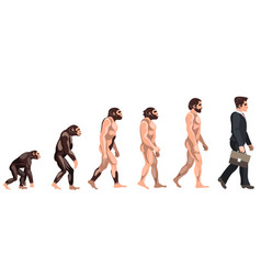 Human evolution from ancient times till nowadays vector