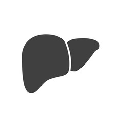 Liver related icon vector