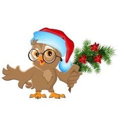 Owl in a Santa Claus hat holding a fir branch vector image