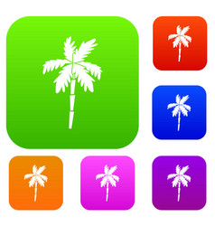 palm tree set collection vector image vector image