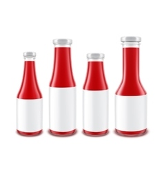 Set of Blank Glass Red Tomato Ketchup Bottles vector image