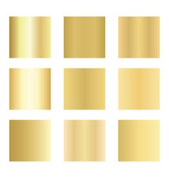 Set of gold gradients Golden backgrounds vector image