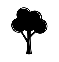 Tree nature leafy botanical silhouette icon vector