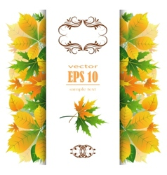beautiful autumn background vector image vector image
