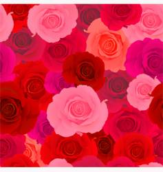 rose wallpaper pattern vector image