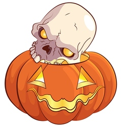 Skull and Pumpkin vector image vector image
