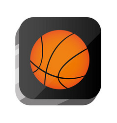 3d button ball of basketball game vector