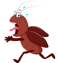 Scary cockroach running cartoon vector