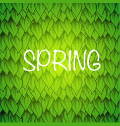 spring leaves wallpaper vector image