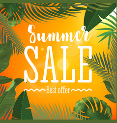 Summer sale banner with vector