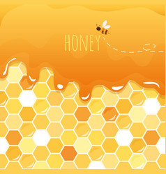 Sweet honey glossy background with copy space for vector