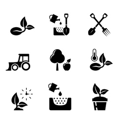 set aqriculture objects vector image