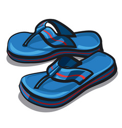 beach blue slippers vector image