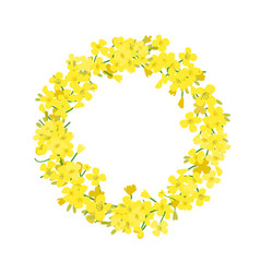 Canola wreath rapeseed garland blossom flowers vector