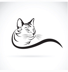 Cat design on white background pet animal vector