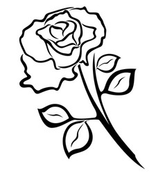rose flower black outline vector image