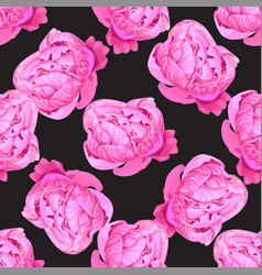 seamless floral hand drawn pattern beautiful pink vector image