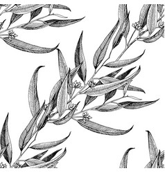 seamless pattern with hand drawn seeded eucalyptys vector image