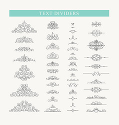 set decorative elements vector image