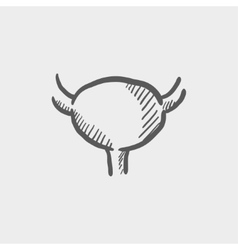Uterus ovaries sketch icon vector image